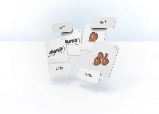 EarlyMinds sample image of Singular and plural cards