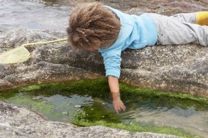child with hand in rock pool